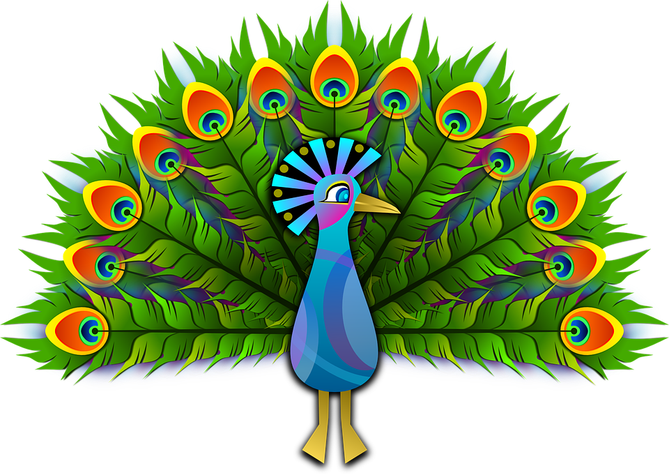 Hourglass clipart cartoon. Peacock png images free