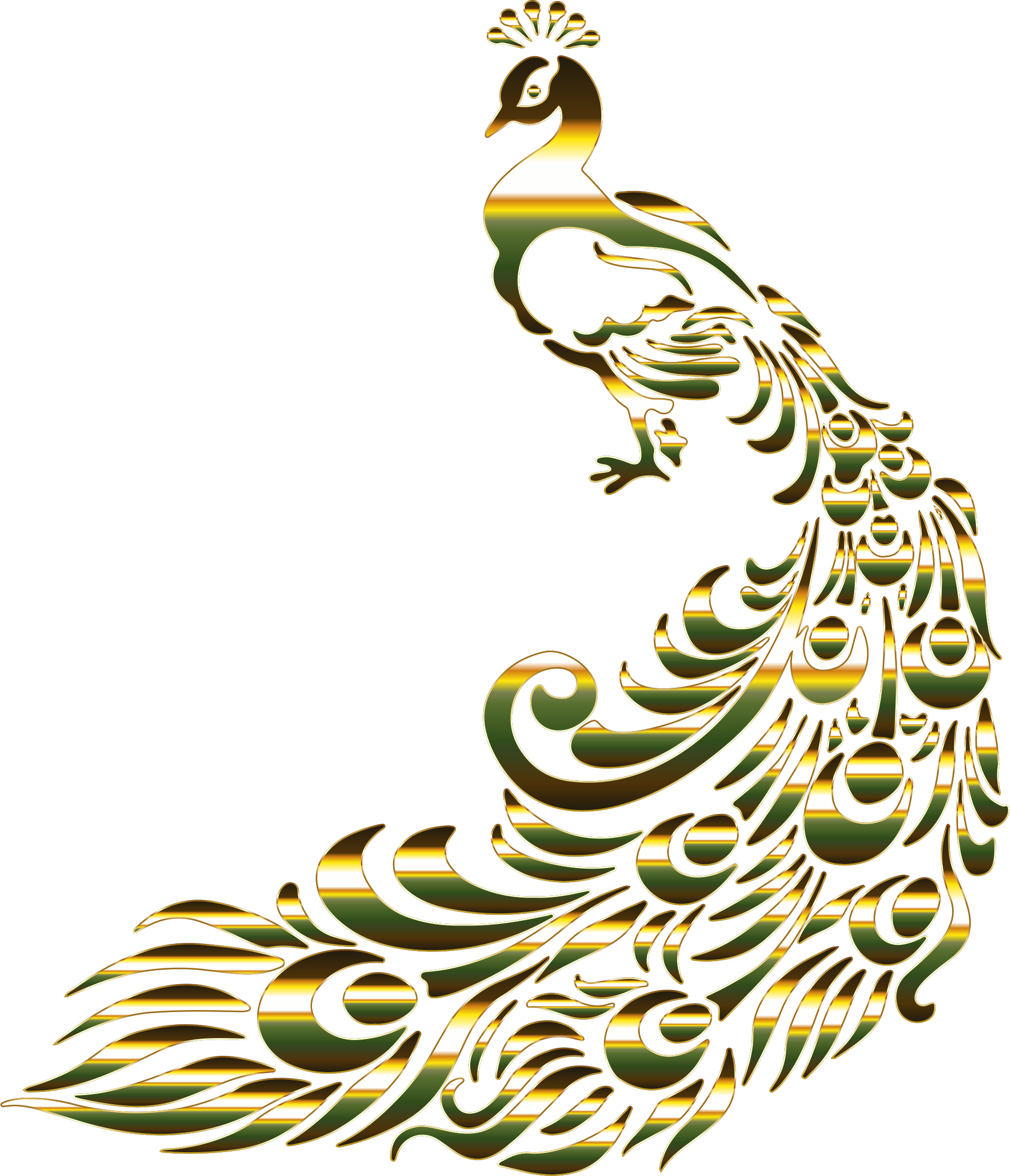 Peacock clipart gold peacock. Chromatic no background big