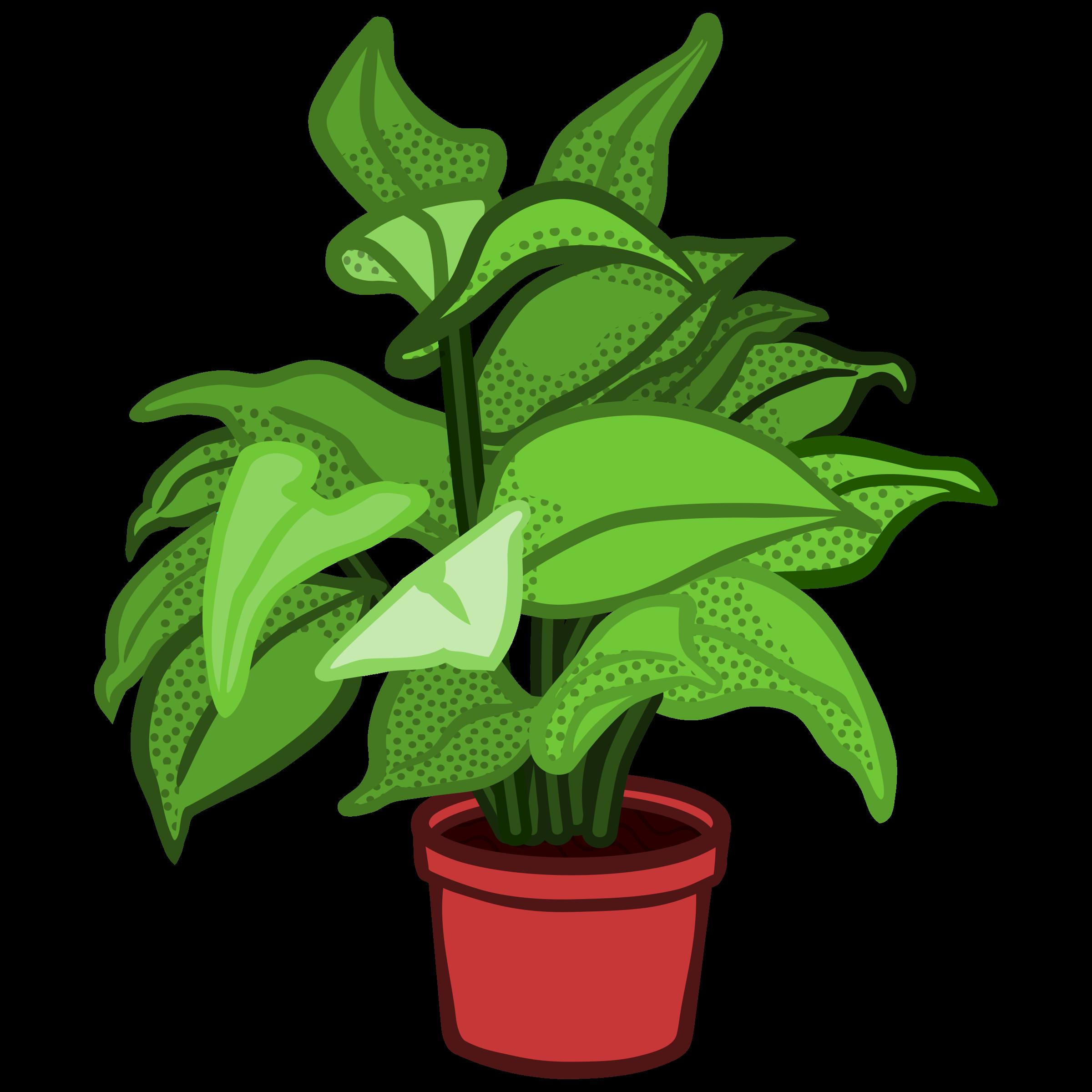 plant clipart terrestrial plant