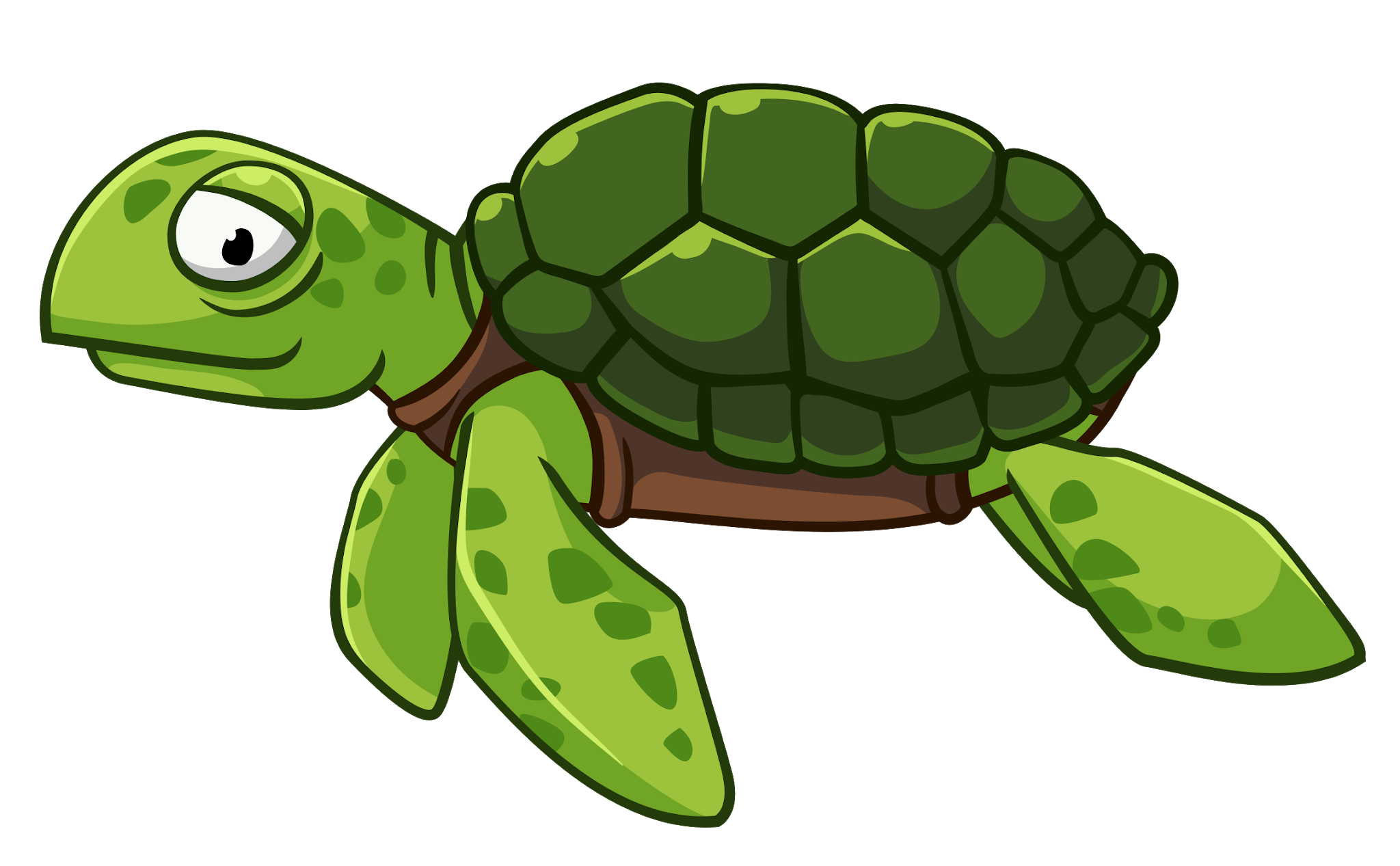 Pin by pngsector on. Clipart turtle green turtle