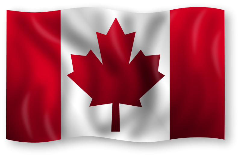 Professional clipart work clipart. Moving to canada imports
