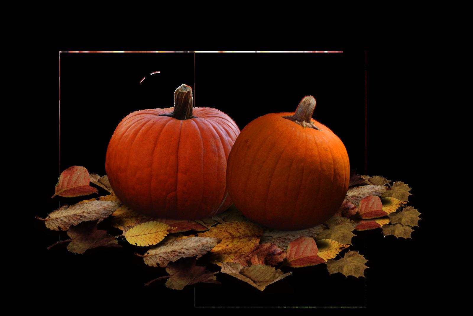 clipart pumpkin day
