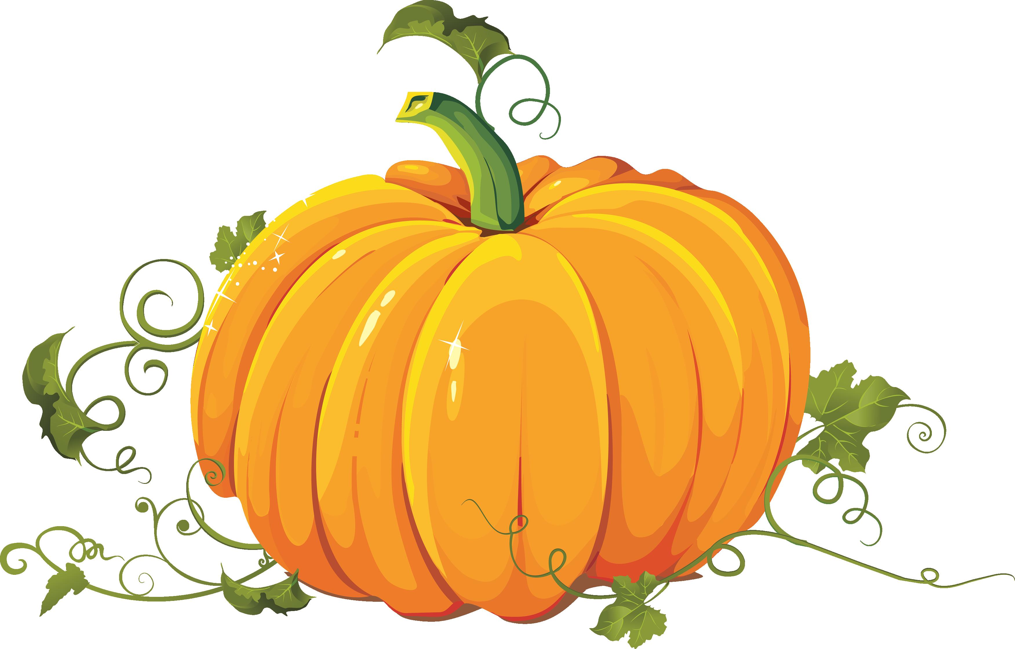 Png images free download. Clipart pumpkin garden