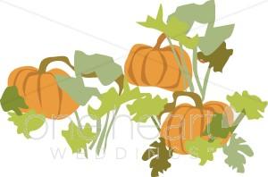Patch wedding . Pumpkin clipart garden