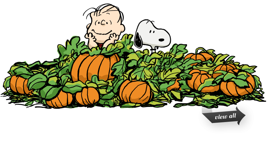 Charlie brown patch clip. Pumpkin clipart ghost
