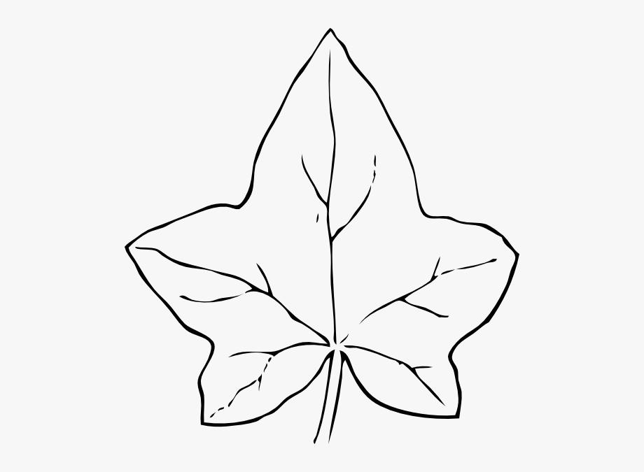 Pumpkin clip art transparent. Ivy clipart big leaf