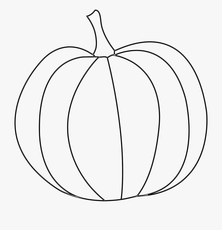 Drawing clip art free. Clipart pumpkin line