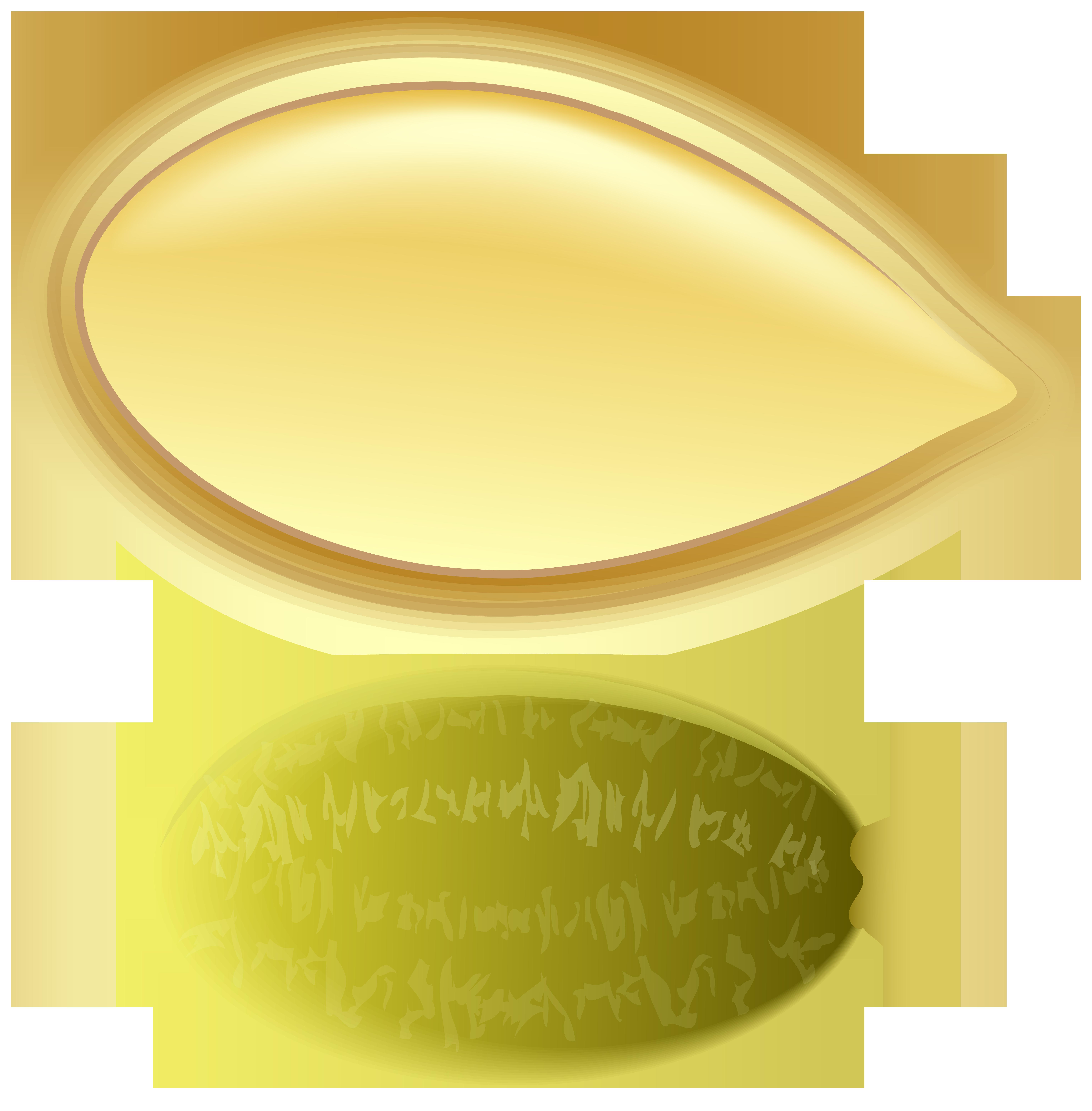 Pumpkin clipart oval. Seed png clip art