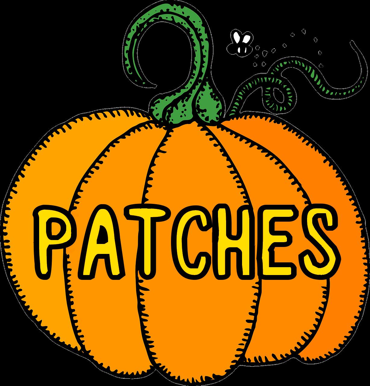 Pumpkin clipart pail. Store pumpkinscom