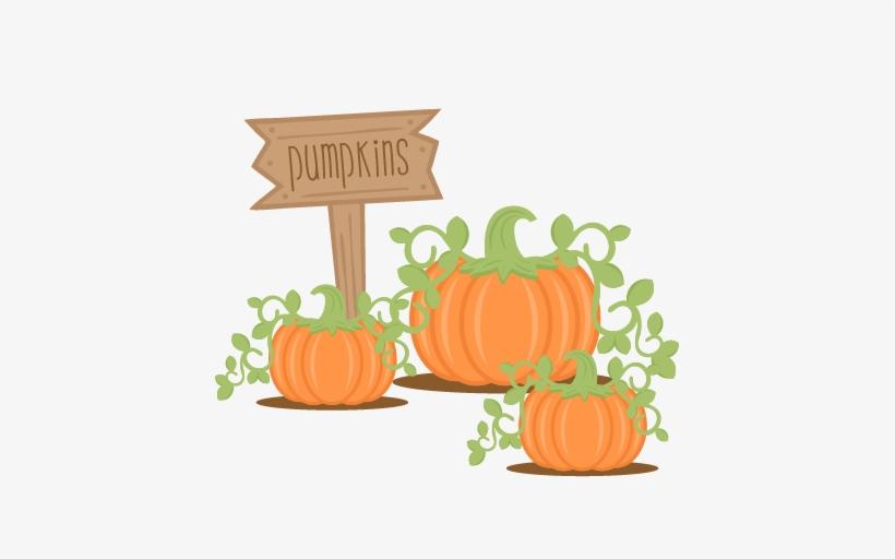 Cute png transparent . Clipart pumpkin pumpkin patch