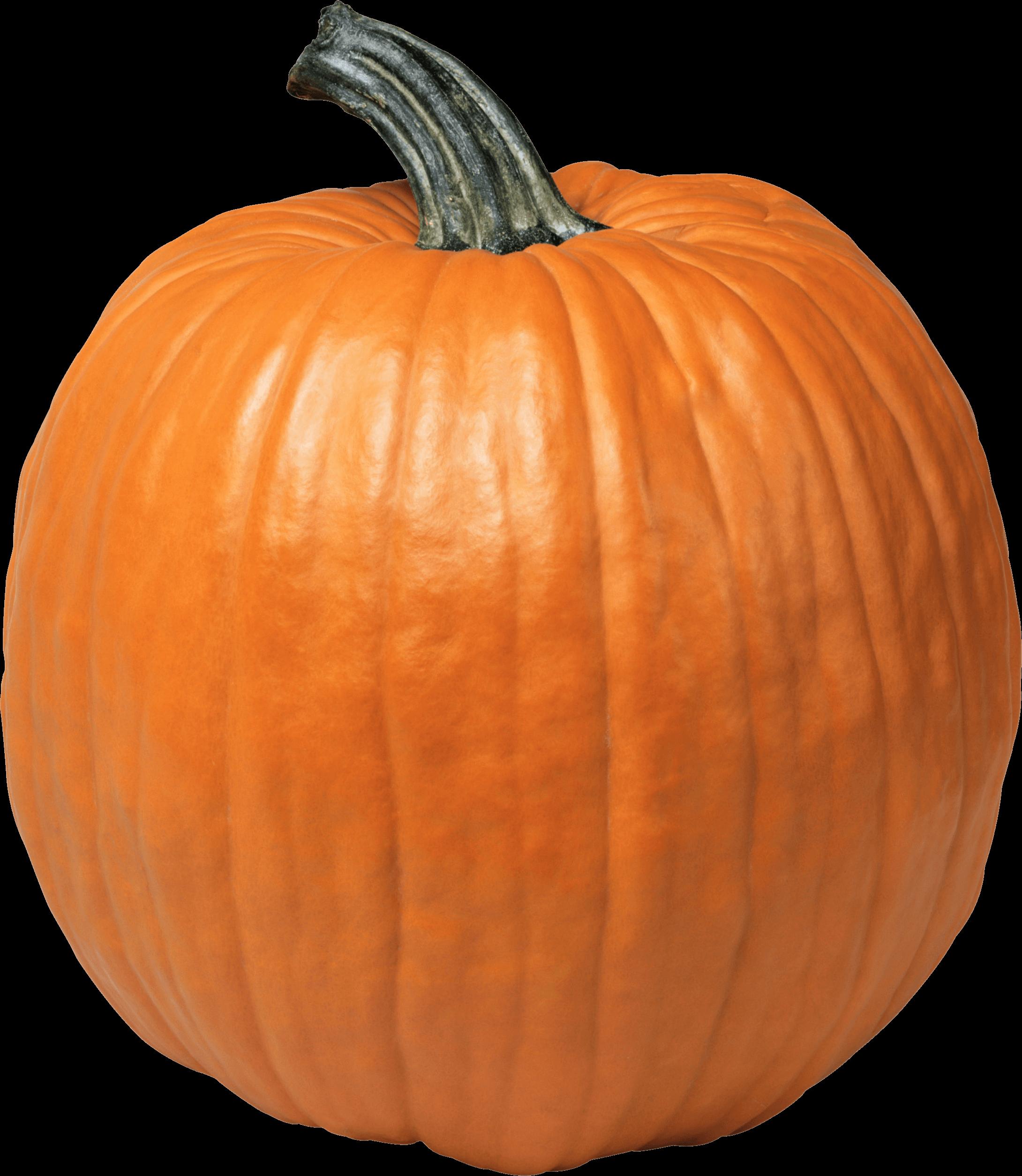 Clipart pumpkin stack. Single transparent png stickpng