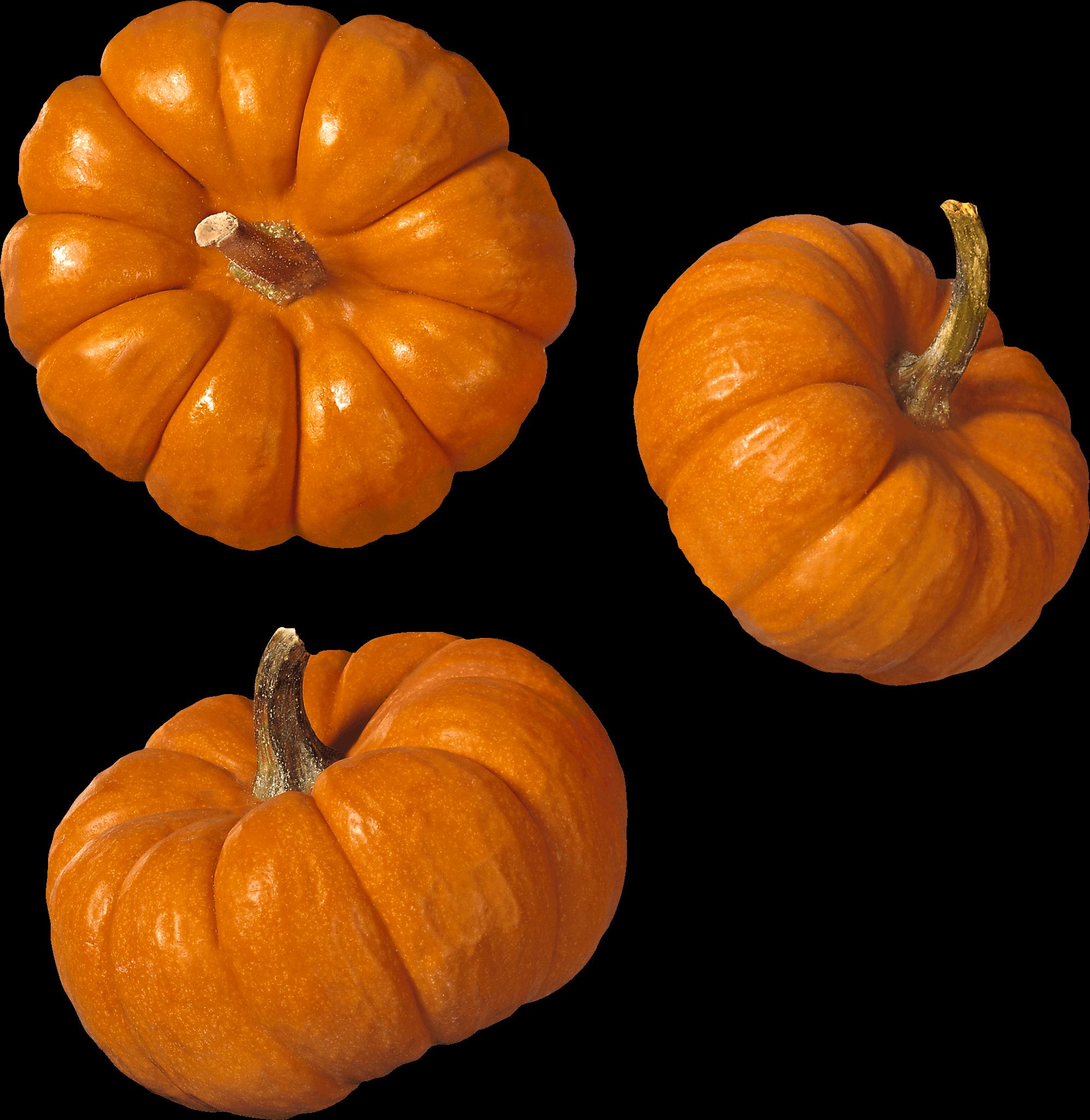 Transparent png stickpng trio. Clipart pumpkin stack
