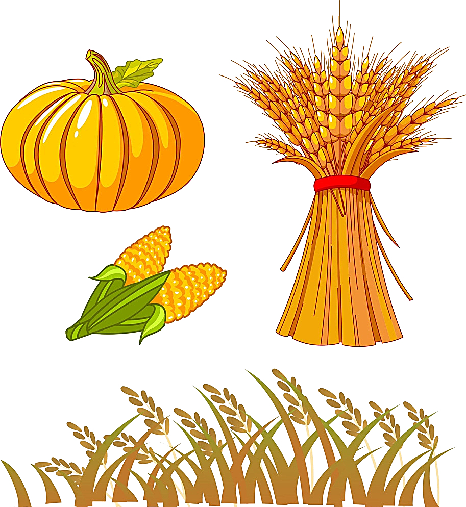 Autumn drawing clip art. Pumpkin clipart stem