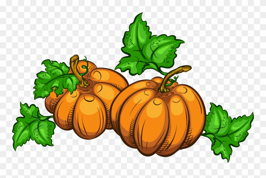 Collection of free transparent. Clipart pumpkin thanksgiving