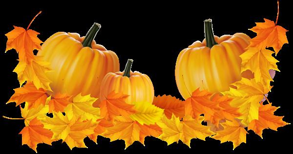 Transparent decor and . Clipart pumpkin thanksgiving