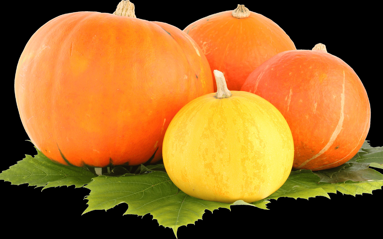 Clipart pumpkin transparent background. Trio png stickpng group