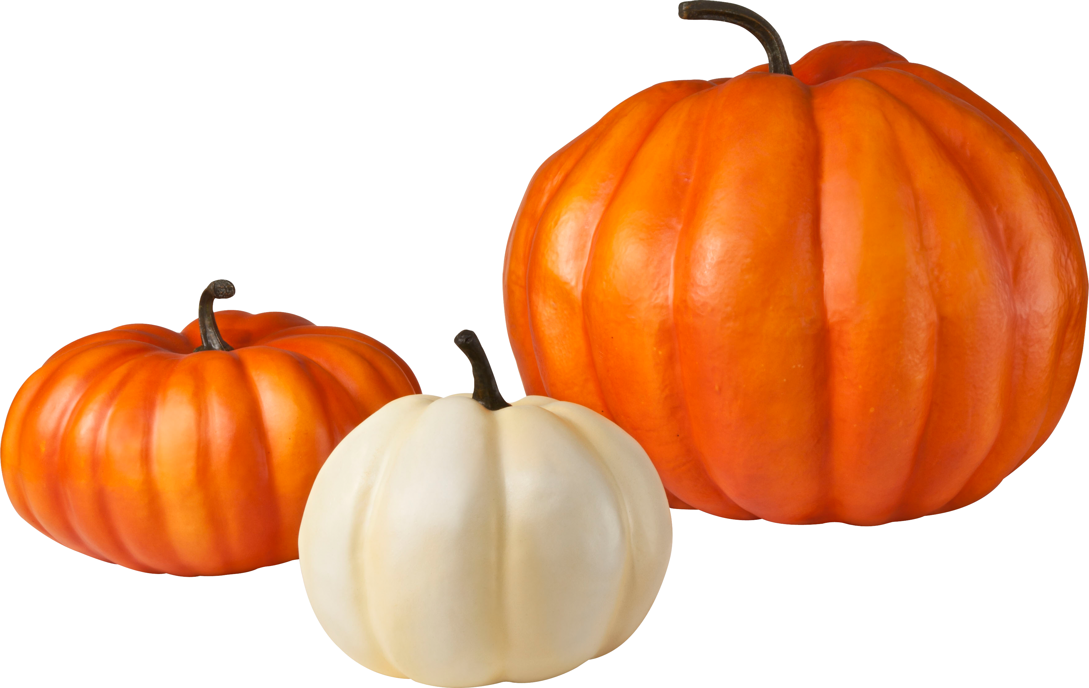 Png images free download. Clipart pumpkin transparent background