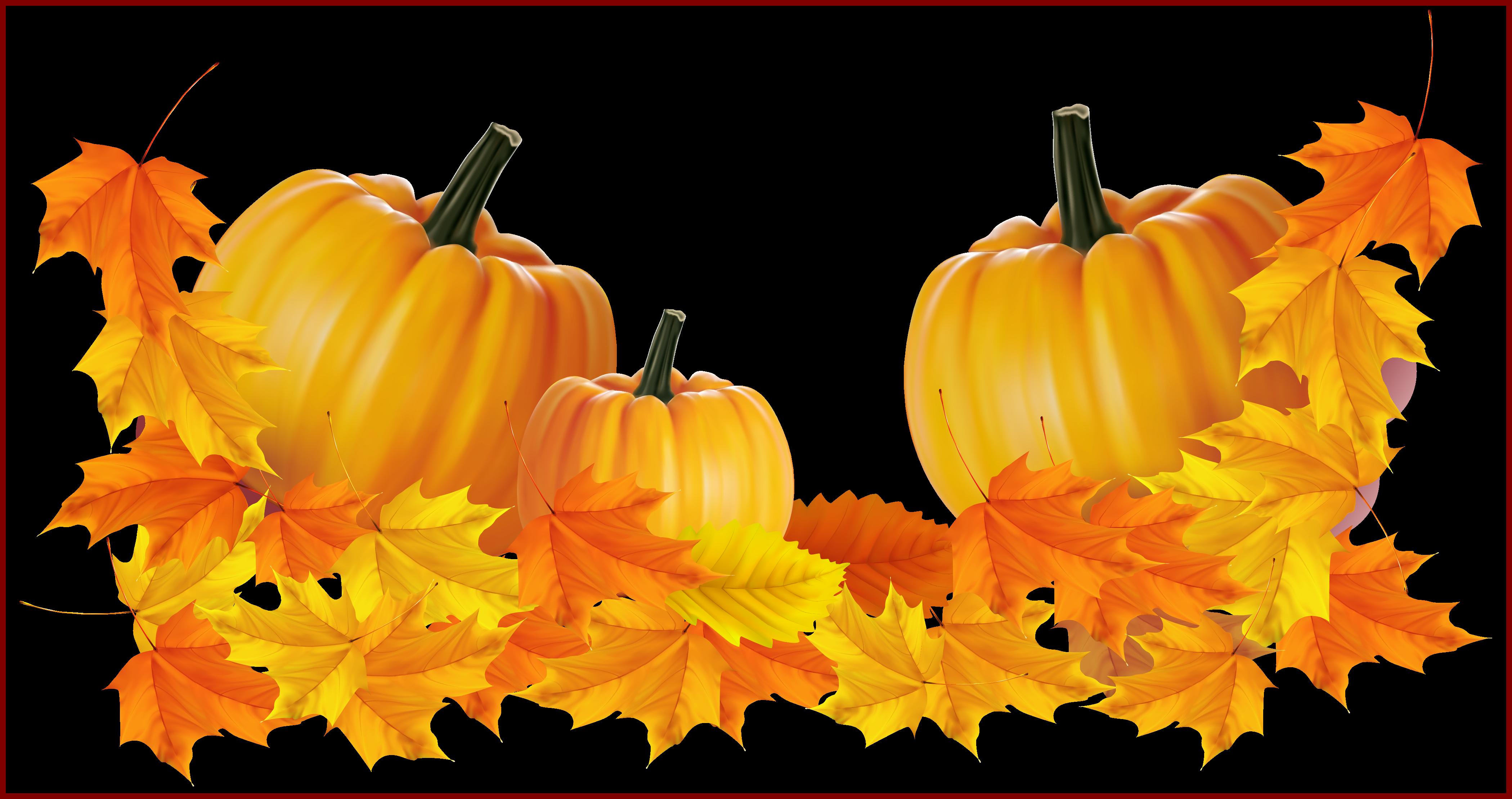 Incredible transparent thanksgiving decor. Clipart pumpkin watercolor