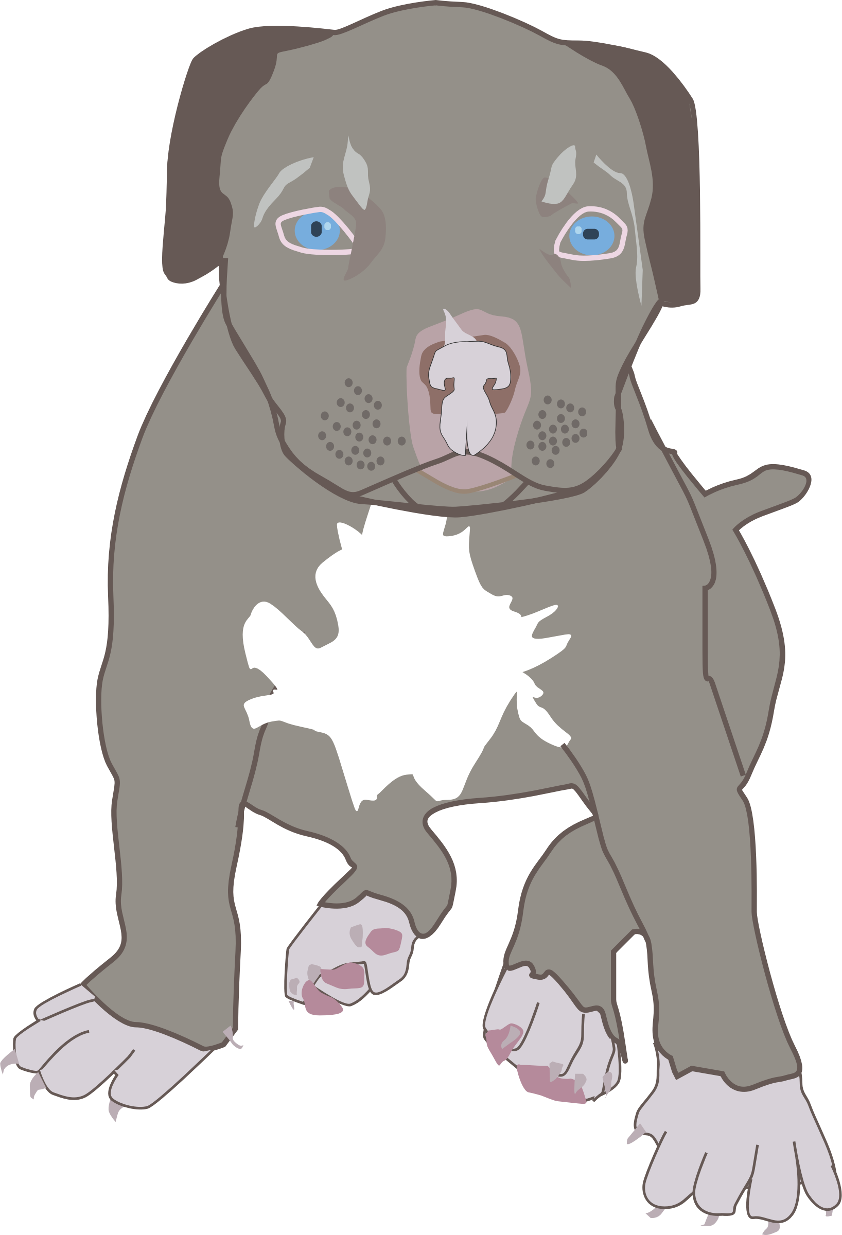 Pit bull big image. Clipart puppy 2 puppy