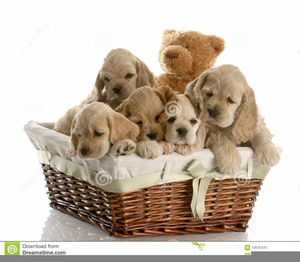 Puppies free images at. Clipart puppy 5 puppy