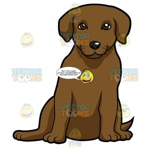Labrador sitting down and. Clipart puppy chocolate lab