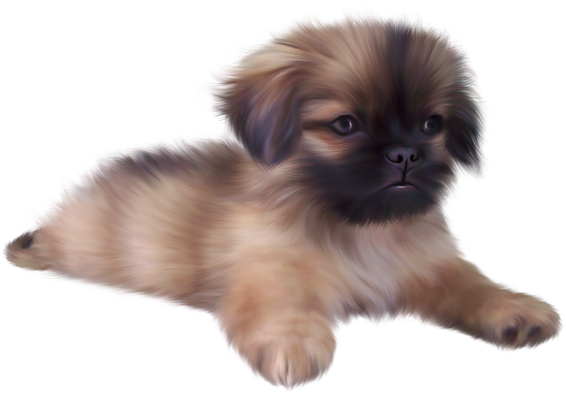 Clipart puppy cute. Painted png clip art