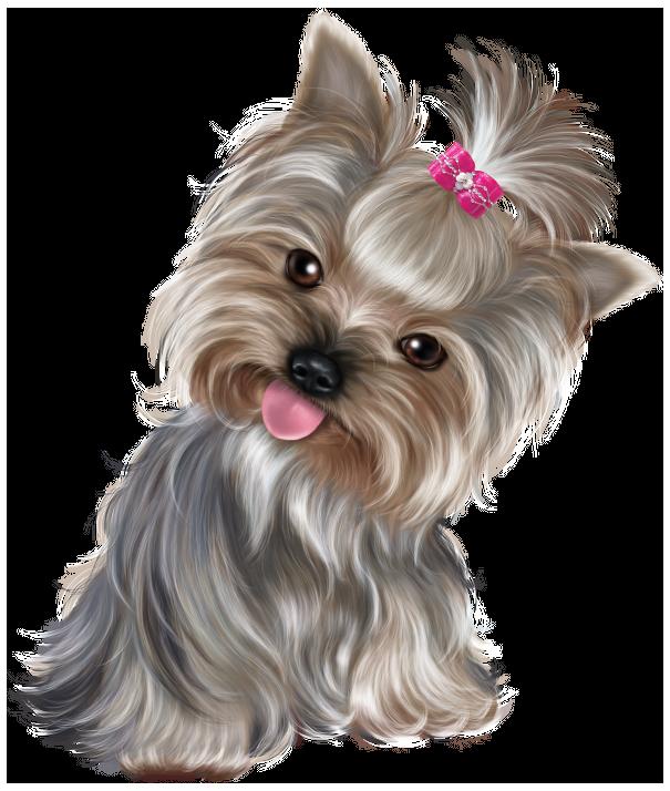 Clipart puppy cute. Png clip art best