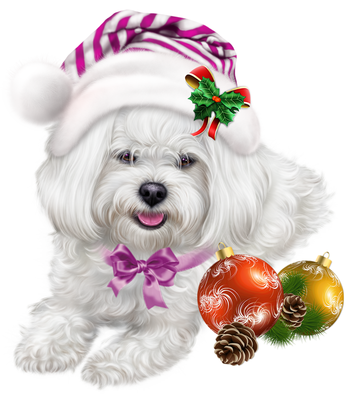 Clipart puppy girly. Pin by girl on