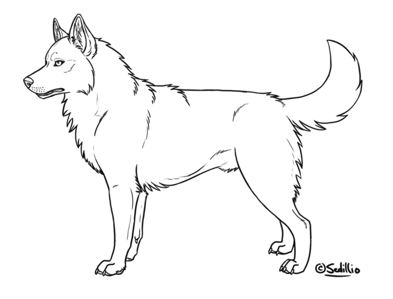 Husky clipart husky puppy. Puppies drawing at getdrawings
