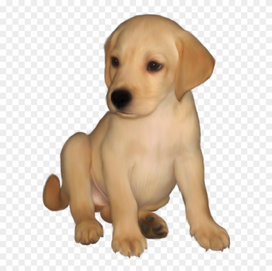 Retriever clip art png. Clipart puppy labrador