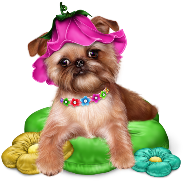 Pin by paula constantinescu. Clipart puppy maltipoo