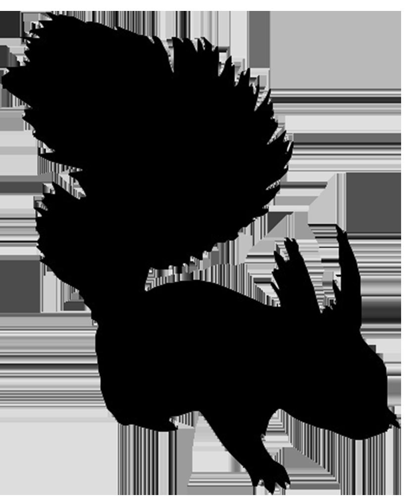 Eagle silhouette clip art. Clipart puppy maltipoo