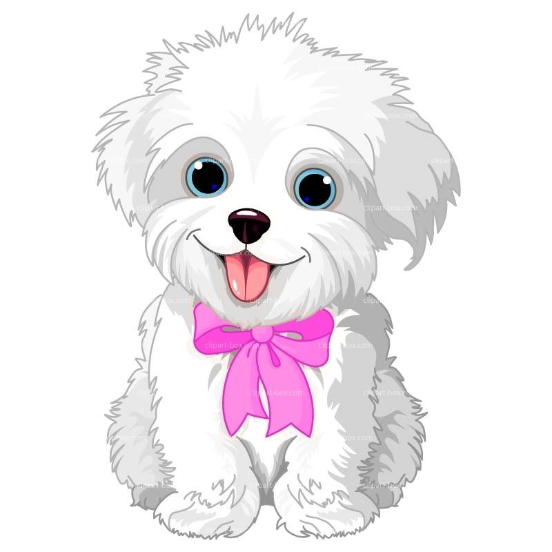 Clipart puppy maltipoo. Pin by bonnie cook