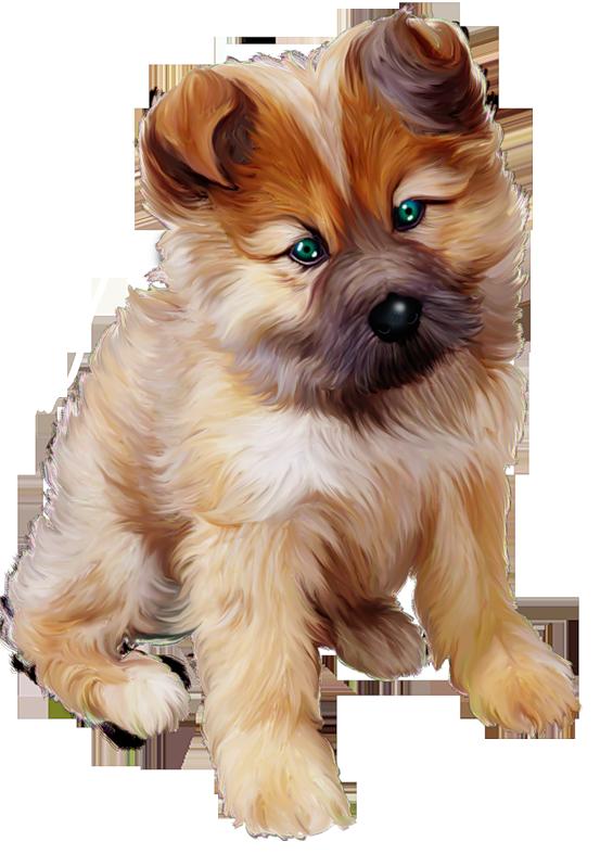 Clipart puppy puppy love. Art png zwierzaki pinterest