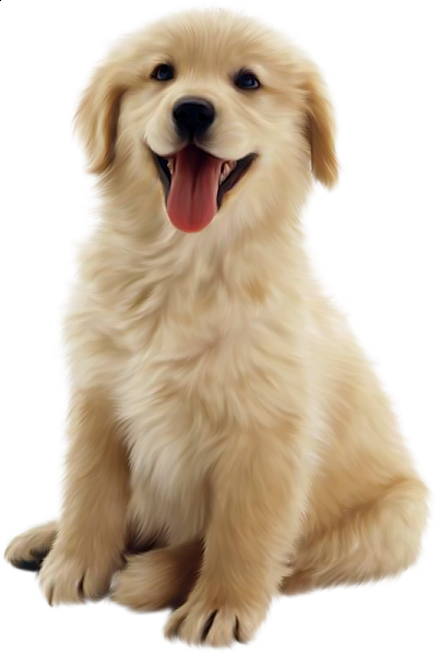 Clipart puppy real puppy. Cute dog animals dogs