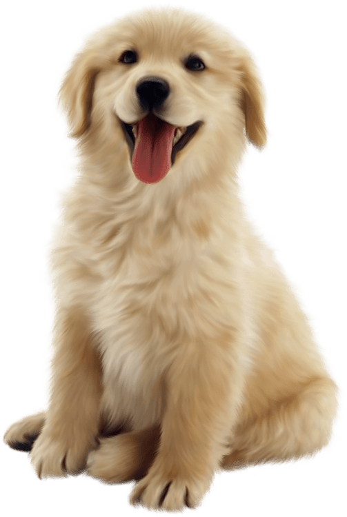 Real dog cliparts zone. Clipart puppy realistic