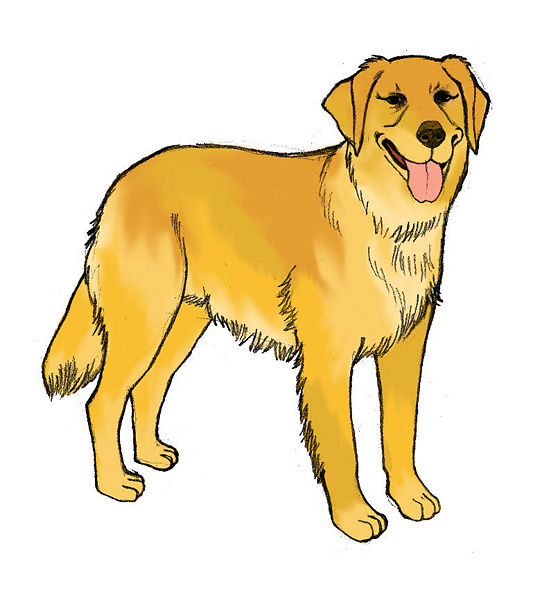 Free colorful dog cliparts. Clipart puppy realistic