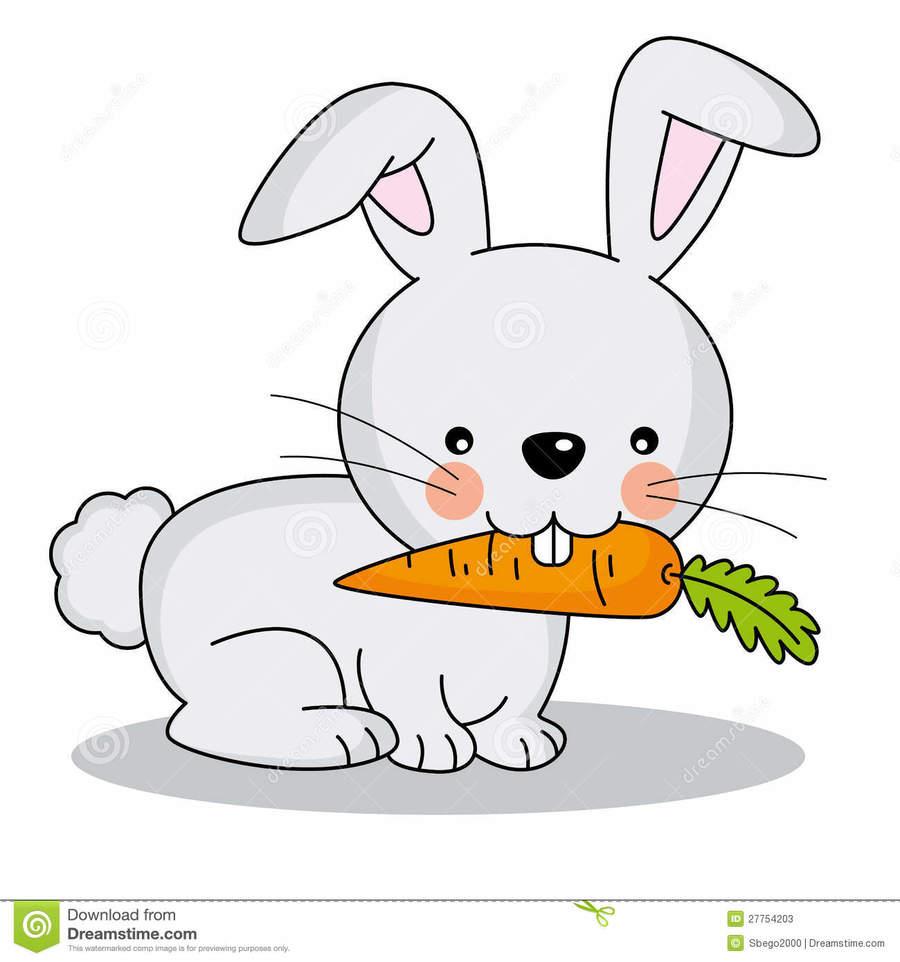 Download bunny eating cartoon. Clipart rabbit carrot