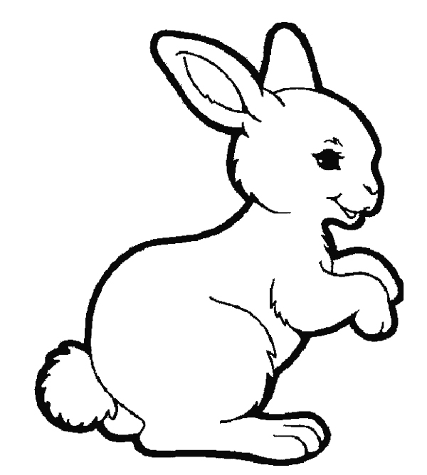 Pages free download best. Clipart rabbit coloring page