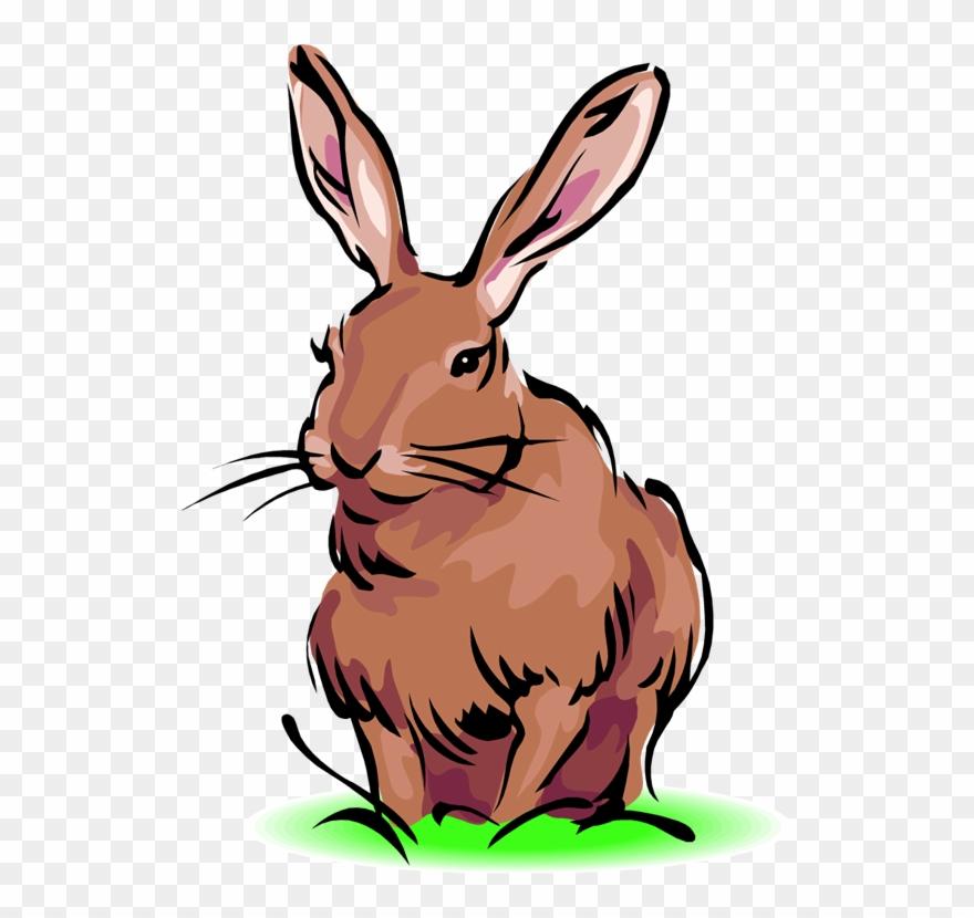 Clipart rabbit jack rabbit. Free black tailed jackrabbit
