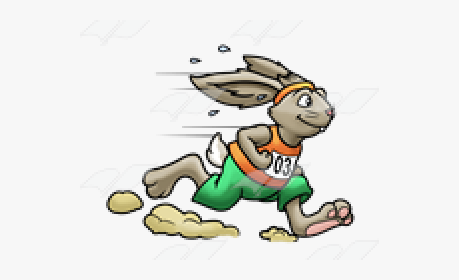 Race clipart animal race. Racing rabbit clip art