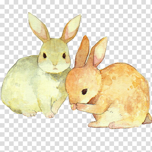 Clipart rabbit two. S painting of gray