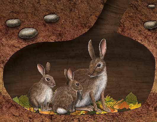 Clipart rabbit underground. Rabbits in an burrow