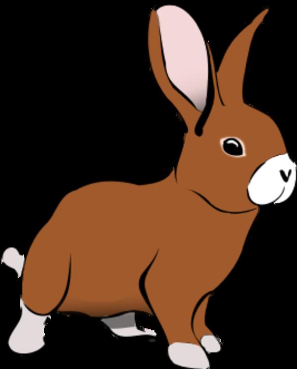 Free png download clip. Clipart rabbit vector