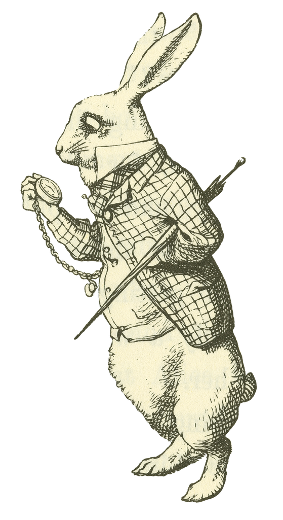 Clipart rabbit watercolor. Spotlight on wonderland the