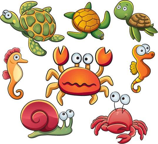 Shell clipart sea creature. Free download clip art