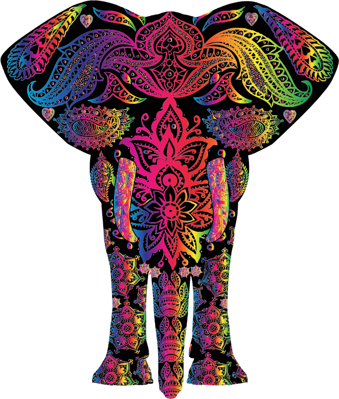 Floral pattern medium image. Elephant clipart rainbow