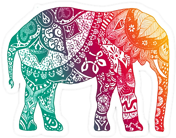 Mandala clipart elephant. Color rainbow sticker by