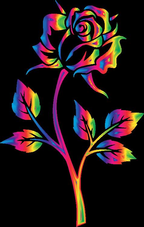 Flower clipart rainbow. Rose no background medium