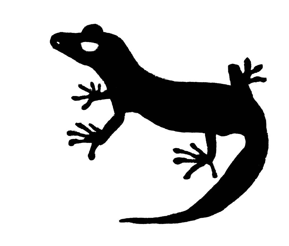 Free cliparts download clip. Gecko clipart line art
